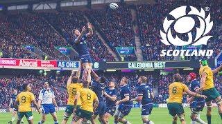 Download Scotland v Australia | Highlights Video