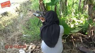 Download BERBURU TEKUKUR DI SAWAH PANEN HASIL MELIMPAH Video