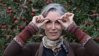 Download Day 5 of the 31-Day Healthy Eye Challenge with Prune Harris! Video