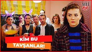 Download Ayşe, Bekarlığa Veda Partisini Bastı! - Afili Aşk 26. Bölüm Video
