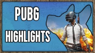 Download Dog Plays PUBG Ft.Reynad, Frodan & DisguisedToast Video