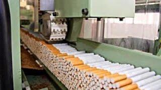 Download لماذا عمال مصنع روثمان لصنع السجائر لايدخنون ؟ استمع للسبب ! Video