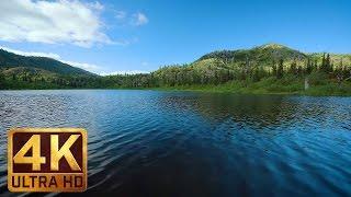 Download 2 Hours Peaceful Lake Views in 4K | Sound of Gentle Lake Waves: Meta Lake at Mt. St. Helens Video