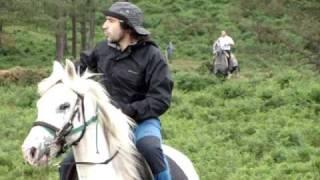 Download Bajada de los caballos salvajes de la motaña Video