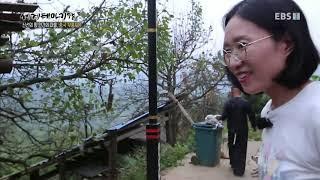 Download 세계테마기행 - 신선의 땅, 인간의 마을, 중국 무릉도원 3부- 숨겨진 낙원을 찾아서 바사묘족 마을 #002 Video