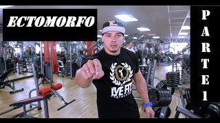 Download Fefrancopro -Treino Ectomorfo 1 Video