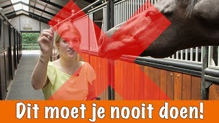 Download Doe dit NOOIT!! | PaardenpraatTV Video
