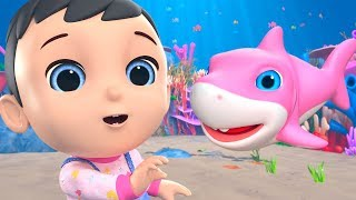Download Baby Shark doo doo doo - Sing and Dance Music for Kids by Little Treehouse Video