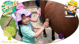 Download เด็กจิ๋ว@Farm de Lek#6 ป้อนอาหารม้า แปรงขนม้า [N'Prim W297] Video