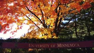 Download Fall at University of Minnesota – iPhone 6S Video