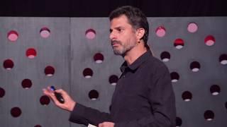 Download Especismo, veganismo e futuro | George Guimarães | TEDxPassoFundo Video