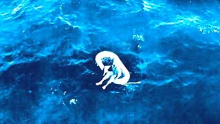 Download In 1961 This Little Girl Was Found Adrift At Sea Decades Later She Revealed The Horrifying Truth Video