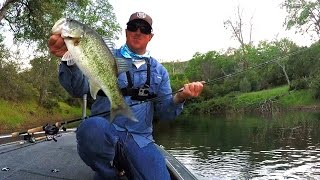Download Popper Tricks You Didn't Even Know To Try! Video