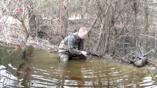 Download Beaver Trapping - Dam Break Set Video