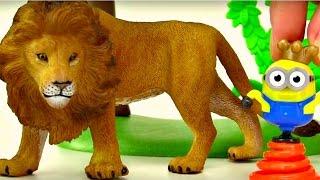 Download Vidéo éducative en français pour enfants. Les animaux sauvages Video