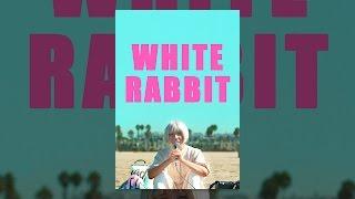Download White Rabbit Video