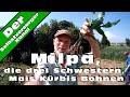 Download Die drei Schwestern, Mais Kürbis Bohnen Video