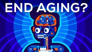 Download Why Age? Should We End Aging Forever? Video