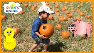 Download Kids Family Fun Trip to the Farm Halloween Pumpkin Patch Corn Maze Children Activities Kids Toys Video