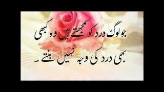 Download Dil main other jane wali batain in Urdu//best collection anmol moti in Urdu Video