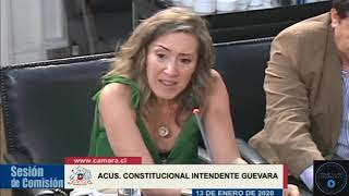 Download Ciudadana de barrio Plaza Italia, Giselle Dessaubat declara en el Congreso . Video