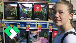 Download 🐢 Shopping For Turtles 🐢 | Clintus.tv Video