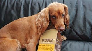 Download PURE PET FOOD | First Taste Video