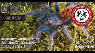 Download Western Invertebrate Show - IT'S THIS WEEKEND! Video