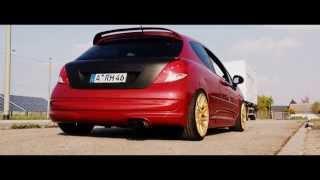 Download DGS (Peugeot 207 RC) Teaser Setup 2k14 Video