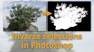 Download Inverse selections in Photoshop - Easily select complex objects Video