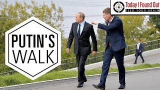 Download Why Does Vladimir Putin Walk So Weird? Video