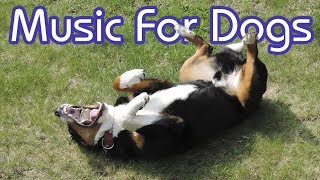 Download How to Calm My Dog! 15 Hours of NEW Relaxing Music for Dogs! Video