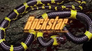 Download Rockstar - Ferr x Adán Cruz x Tommy Smiley x Sick Morrison (REMIX) Video