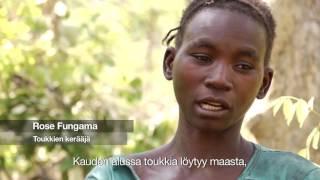 Download Metsien kartoitus ja valvonta ratkaiseva askel Sambian metsäkadon ehkäisyssä Video
