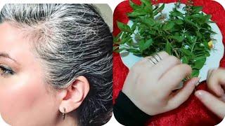 Download وصفة سحرية مذهلة للتخلص من الشيب او الشعر الابيض بمكونين فقط | مجربة ومضمونة 100% Video
