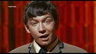 Download The Animals - Around & Around (1964) HD/widescreen ♫♥50 YEARS & counting Video