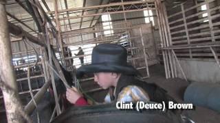 Download Deuce Brown Bull Riding School Video Video