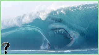 Download What If Megalodon Sharks Didn't Go Extinct? Video