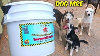 Download Dog MRE (Meal Ready To Eat) Video