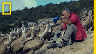 Download The Vultures This Man Loves May Soon Disappear | National Geographic Video