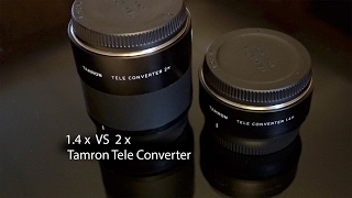 Download Tamrons 1.4x vs 2x Teleconverter Pros and Cons. Video