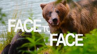 Download A Very GRIZZLY Encounter on an Alaskan Cruise | Touring Tricks Webisode Video