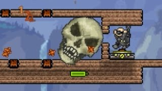 Download Terraria - Playing Pingpong in the Face of Death Video
