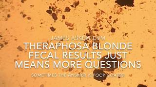 Download THERAPHOSA BLONDE FECAL RESULTS JUST MEANS MORE QUESTIONS Video