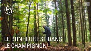 Download «La cueillette aux petits bonheurs» ou la quête du champignon en guise de paradis. Video