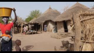 Download Renforcer le pouvoir des communautés forestières en Gambie Video