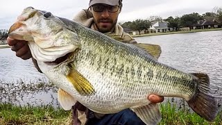 Download BASS OF A LIFETIME hits RIGHT at the BANK!!! Video