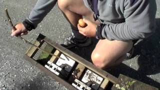 Download How to set a stoat trap Video