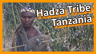 Download Tanzania - Lake Eyasi: Hadza tribe hunters & gatherers Video