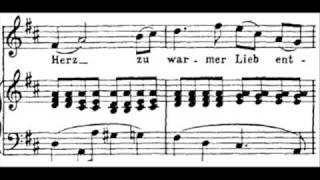Download Franz Schubert: An Die Musik, D 547 - Felicity Lott Video